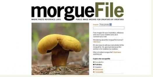 Plus de 250 sites pour trouver des photos gratuites