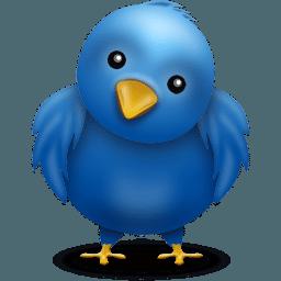 Image de l'oiseau de Twittter