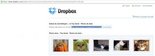 dropbox-acces-gallerie