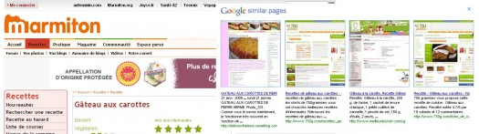 google-similar-pages-exemple