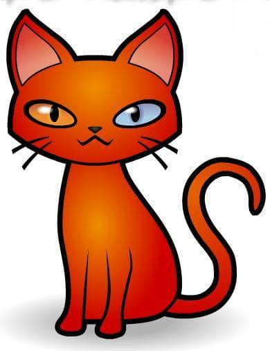creation-chat-rouge
