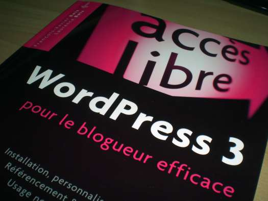 wordpress3-blogueur-efficace