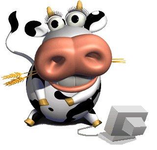 vache-lait