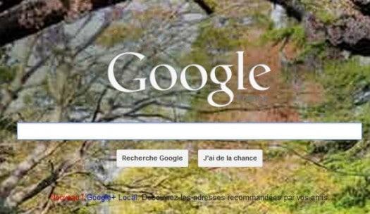 Les fonds d 39 cran de bing sur la page d 39 accueil de google for Change vos fenetre cas par cas logo