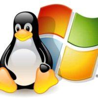 linux-windows-partition
