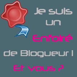 """Le retour des """"Enfoirés de blogueurs"""""""