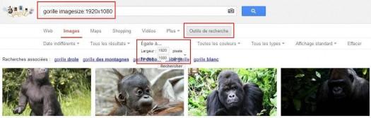 google-image-taille-exacte