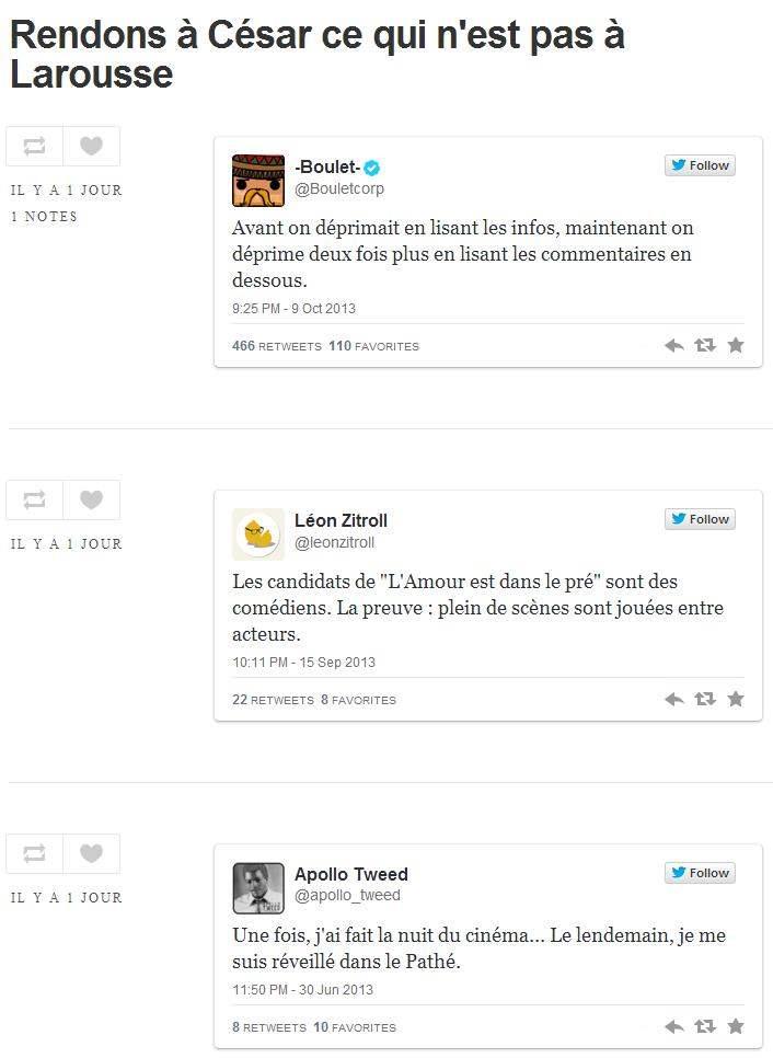 Le Tumblr des tweets que Larousse voulait publier