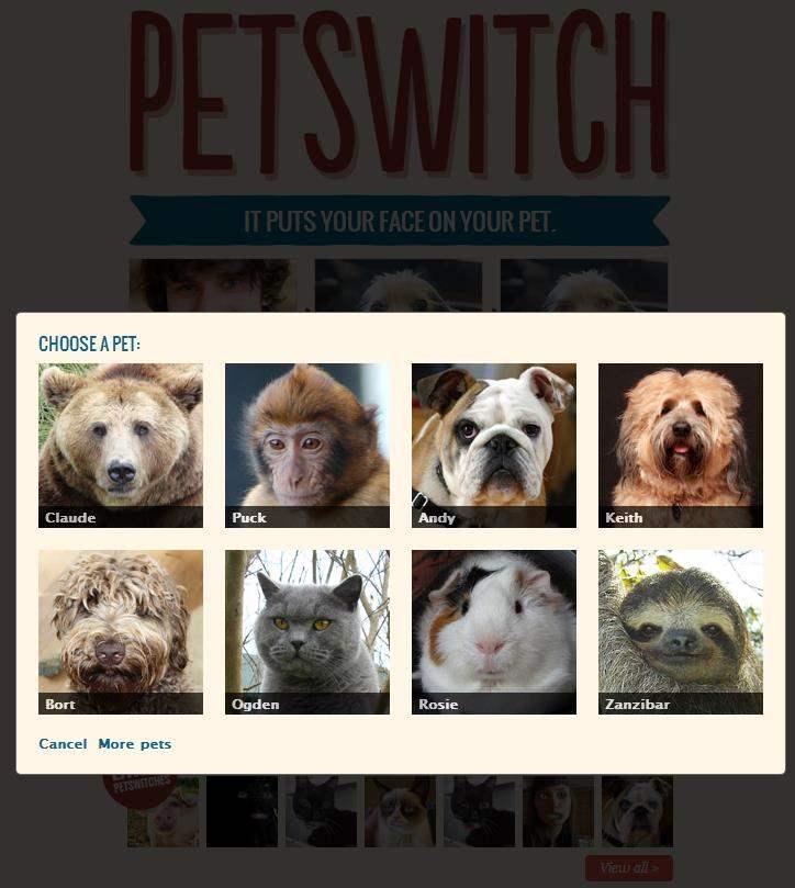 petswitch