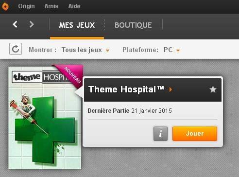 theme-hospital-origin