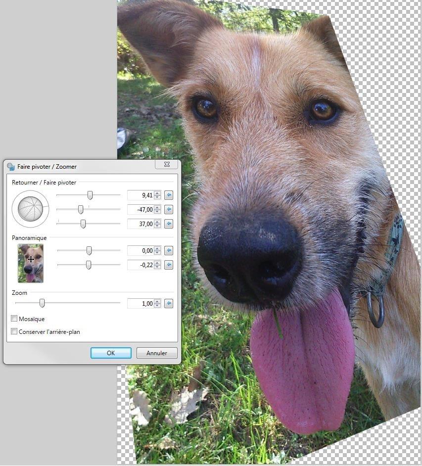 Comment incliner une image avec Paint.net