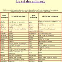 cris-animaux-verbes