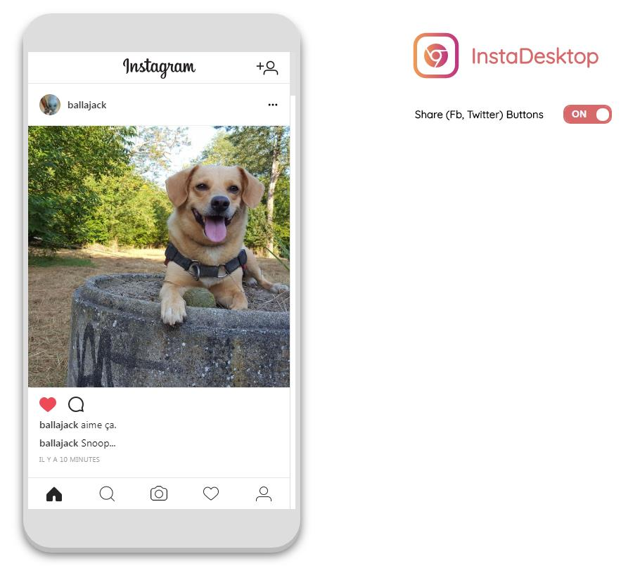 instagram-chrome-snoop