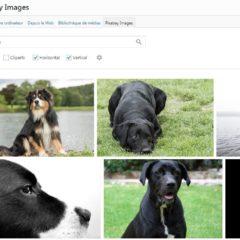 Intégrer la banque d'images Pixabay à WordPress