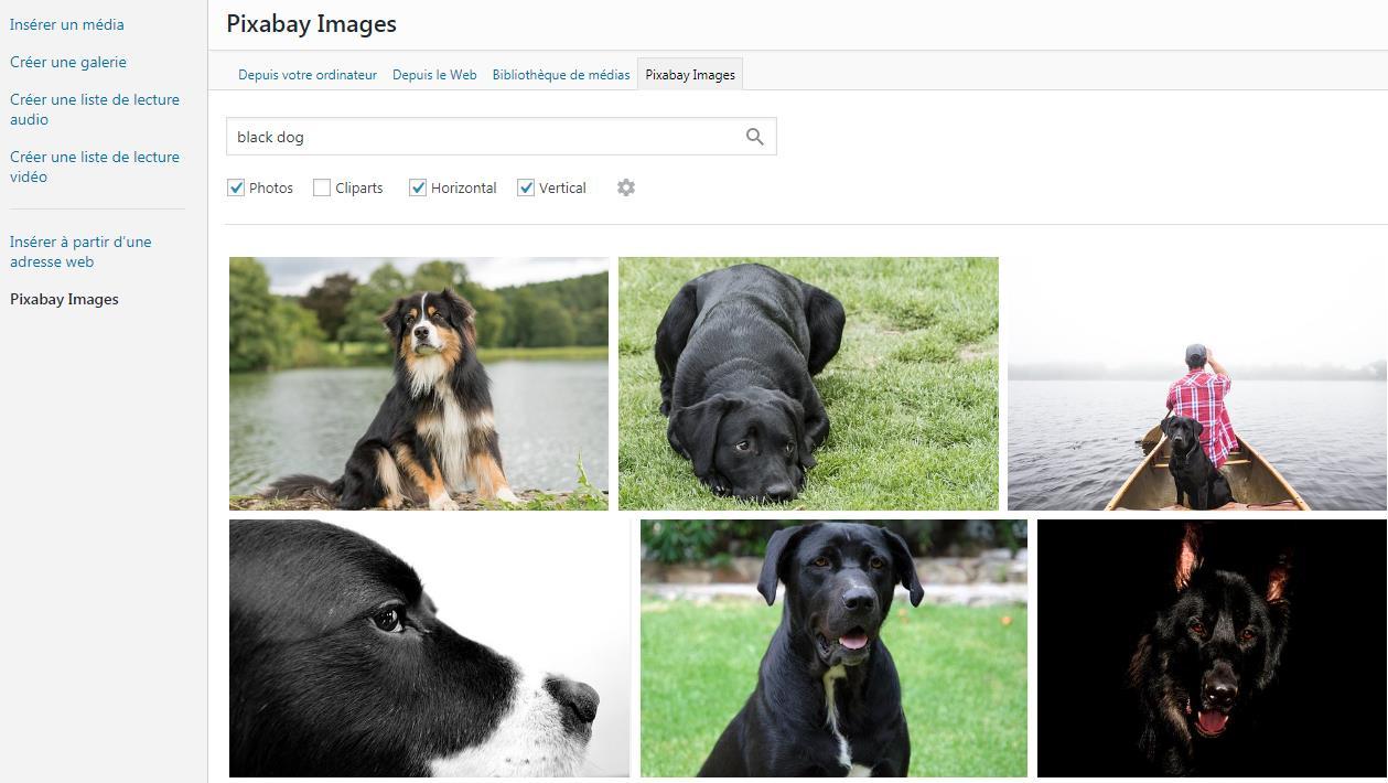 pixabay-images