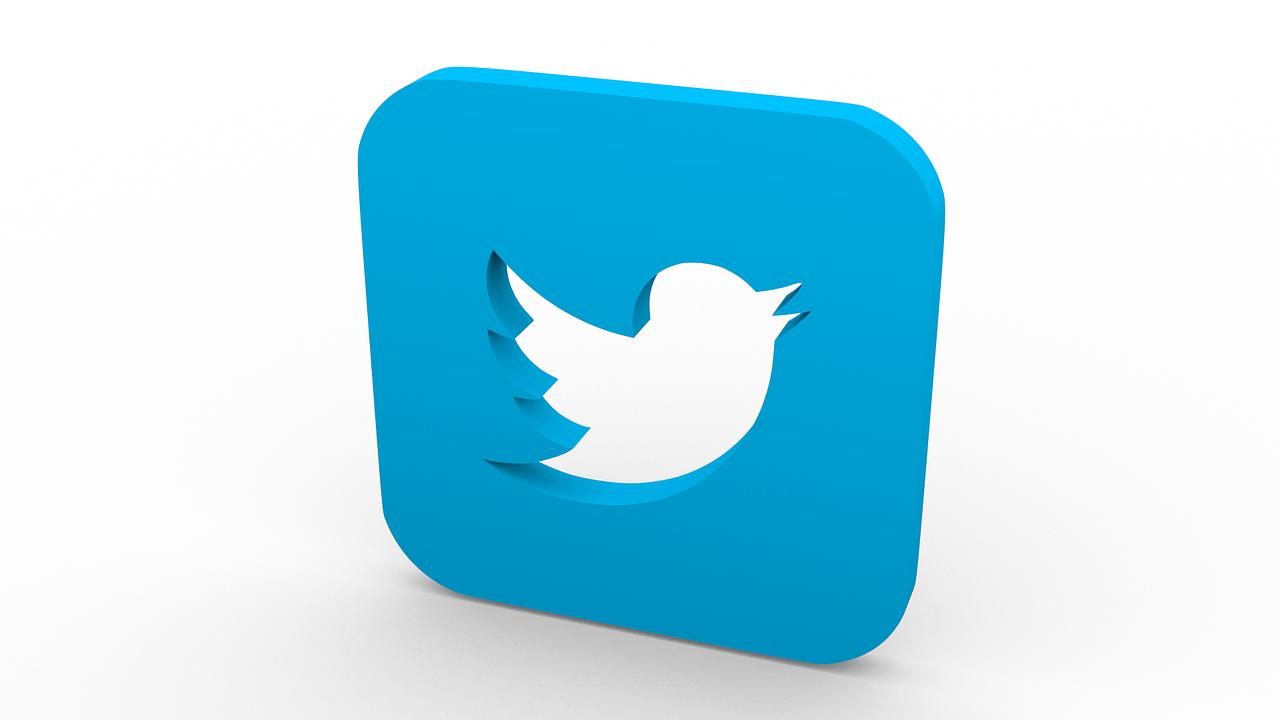 oiseau-twitter